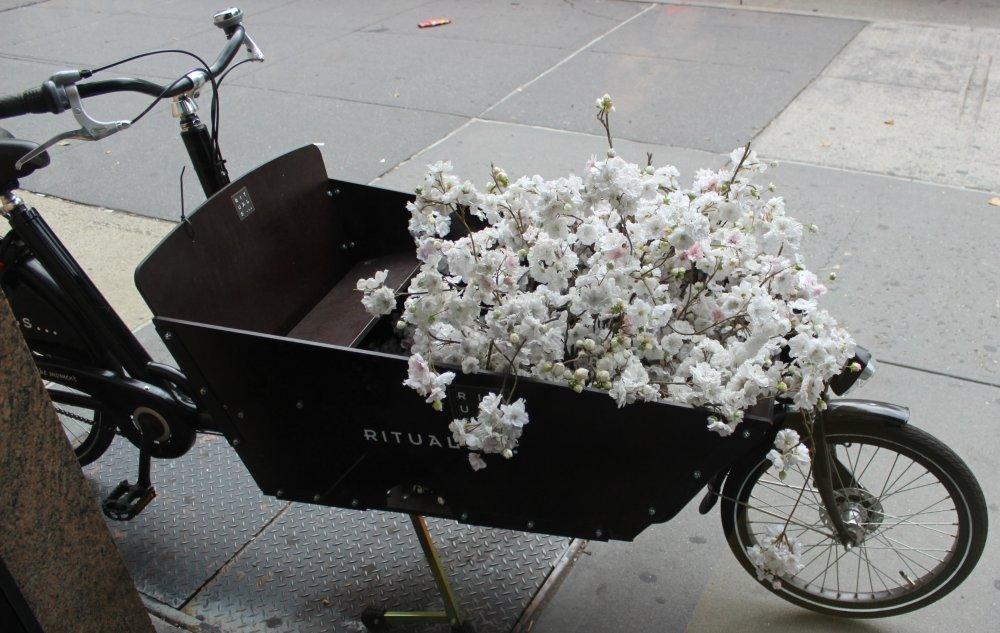 rituals cart
